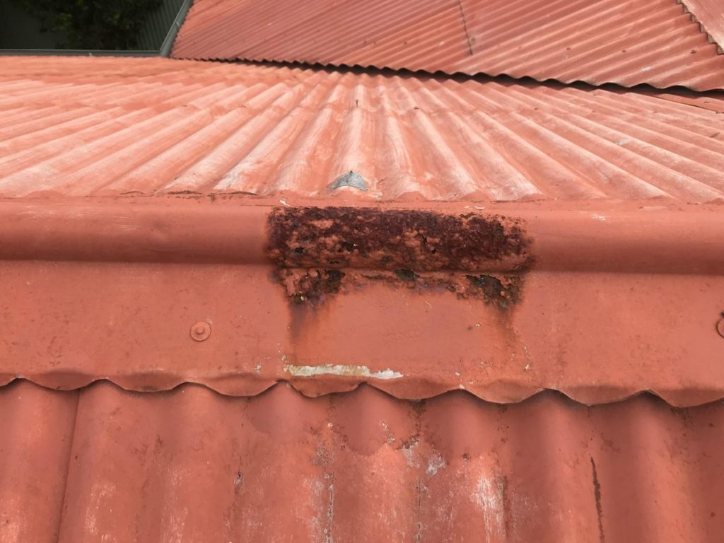 Renovated Home Inspection